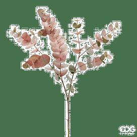 Эвкалипт SIA Арт.232313,75