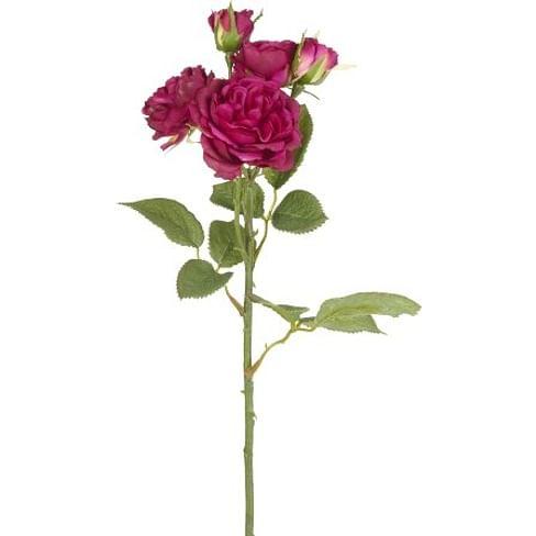 Роза Спрей SIA Арт.SIA-4443