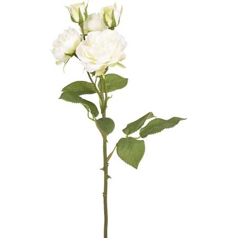 Роза Спрей SIA Арт.SIA-4445