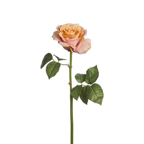 Роза Сара SIA Арт.011720