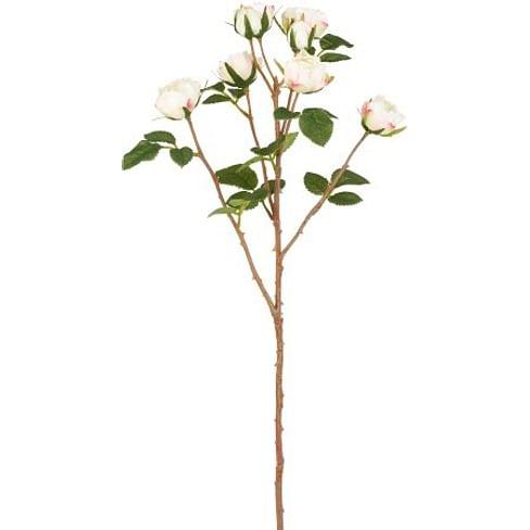 Роза Чайная SIA Арт.SIA-4493