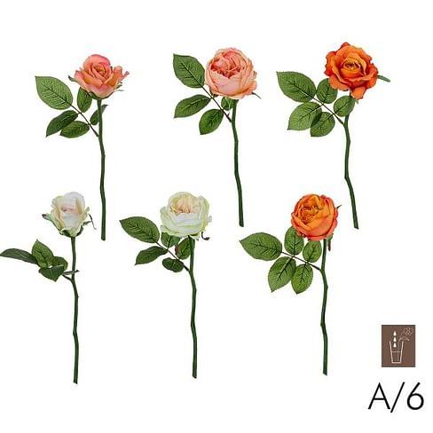 Роза Мария SIA Арт.010228