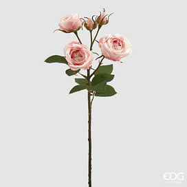 Роза Кинг EDG Enzo De Gasperi Арт.214786,52