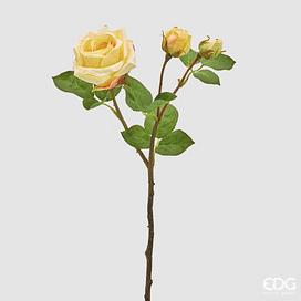 Роза Элис EDG Enzo De Gasperi Арт.214895,20