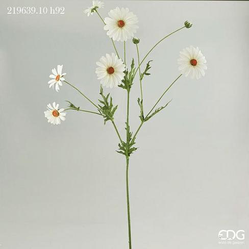 Маргаритка EDG Enzo De Gasperi Арт.219639,10