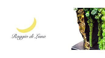 Вазы Raggio di Luna - страсть под маской величия
