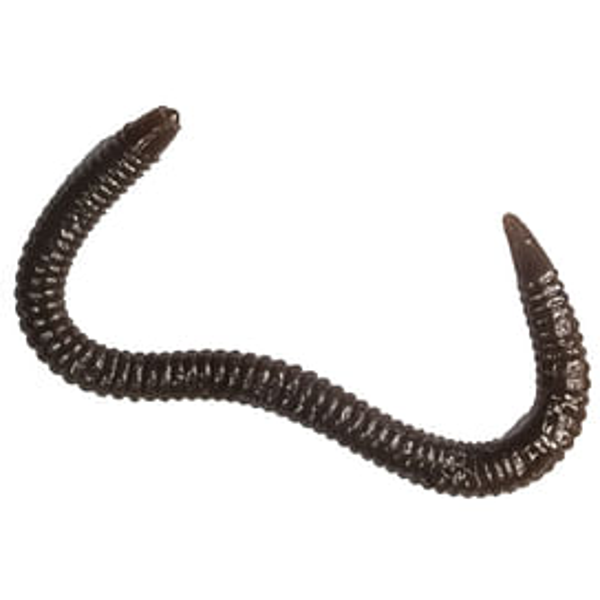 Мягкая приманка LureMax GARDEN WORM 4''/10см, LSGW4-018 Worm Brown (20 шт.)