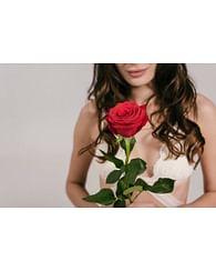 Роза Неувядающая Любовь