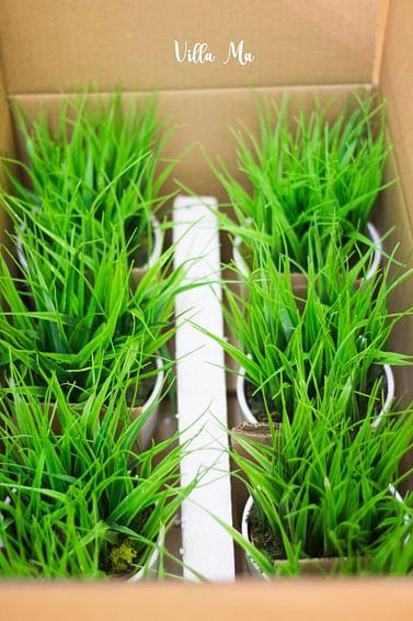 Трава искусственная в кашпо керамика
