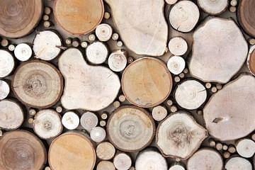 Спил деревянный (за 5 шт)