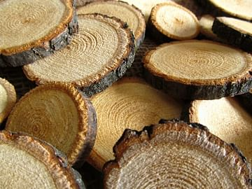 Спил деревянный (за 4 шт)