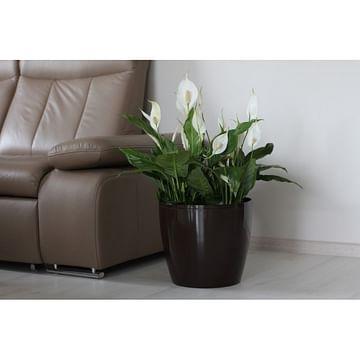 Горшок для цветов Lamela Magnolia Glossy