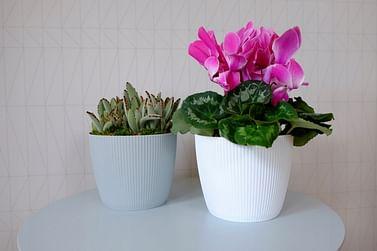 Горшок для цветов Lamela Magnolia Jumper