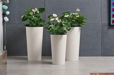 Горшок для цветов Lamela Lilia Dluto