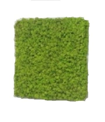 Зелёная картина из стаб. мха 32*32см