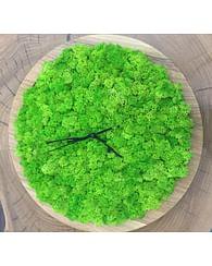Часы из мха и круглые панно 30см