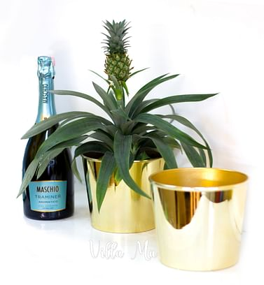 Кашпо для цветов SHISHI глянцевое золото