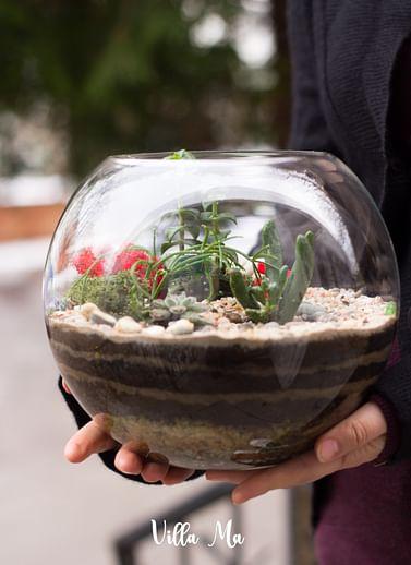 Флорариум в шаре