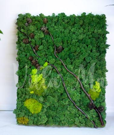 Эко-картина из мха Лесной Этюд