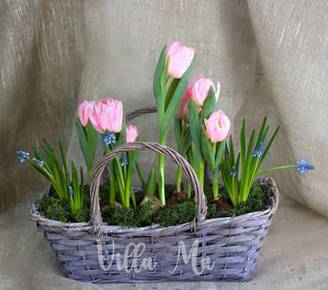 Тюльпаны в корзине Шебби