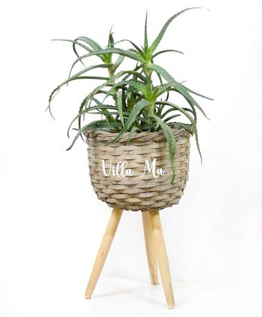 Кашпо для растений плетеное