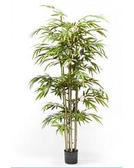 Бамбуковая пальма 180 см искусств.