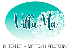 Villa Ma