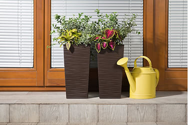 Товары для растений